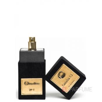 Coquillete Camellia 3.2